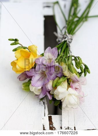 simple hand tied posy of spring freesia