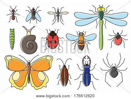 Insects set in flat style. Line art bugs icon collection.
