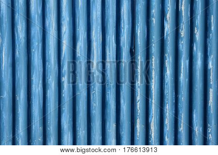 A fragment of a fence built of corrugated metal sheet
