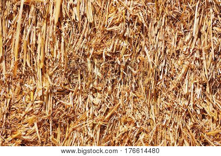 Abstract background of a tightly packed bale of straw