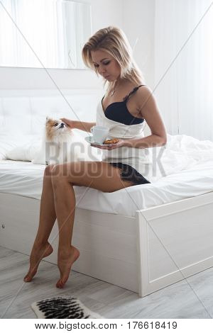 Beautiful sexy blonde girl posing in the morning in the hotel bed with her small dog. Selective focus on the dog.