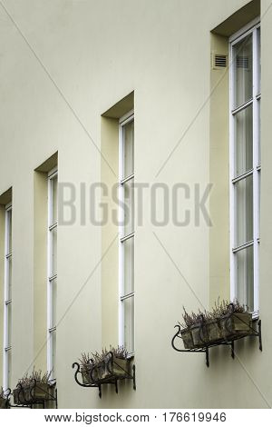 Beige painted wall with four windows. Side view