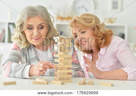 Portrait of elderly senior women playing a game
