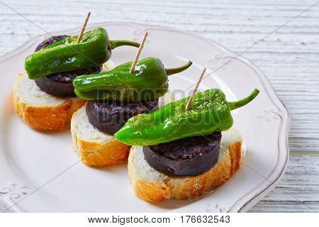 pinchos Burgos morcilla with padron pepper tapas pintxos from Spain food