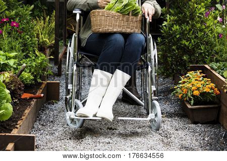 Senior Adult Woman Sitting on Wheelchair in a Park