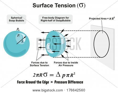 Surface Tension Physics Lesson of spherical soap bubble with all forces arrows and inside air pressure difference and projected area diagram for science education