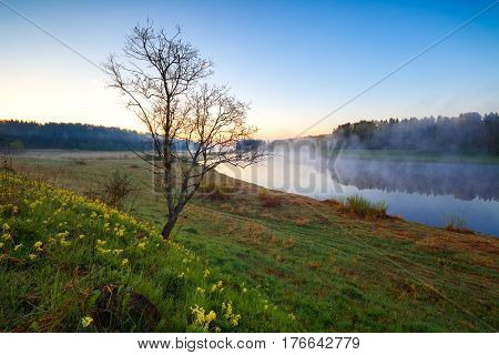 Spring landscape with the river in the early foggy morning. Volga river in the Tver region.