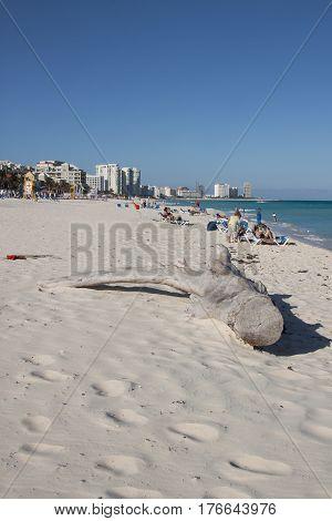 Cancun Hotel Area Beach