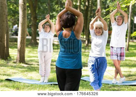 Smiling Seniors Having A Yoga Class Outdoors