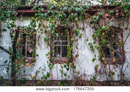 Old house in Krasne deserted village of Chernobyl Exclusion Zone Ukraine