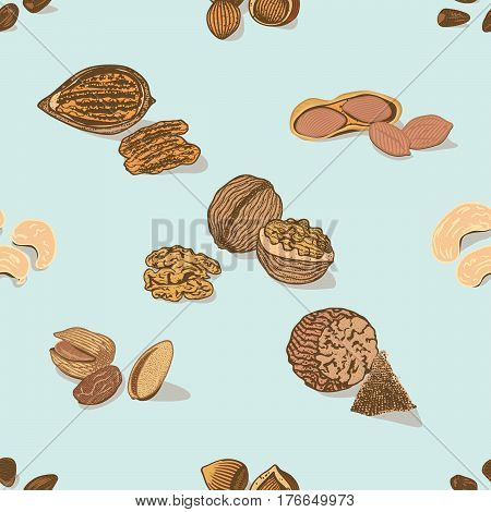 Colorful nuts and seeds seamless pattern with walnut peanut nutmeg cashew and hazelnut on light background vector illustration