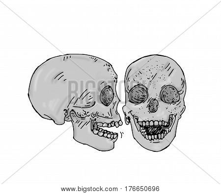Two gray skulls laughing human bones In cartoon style