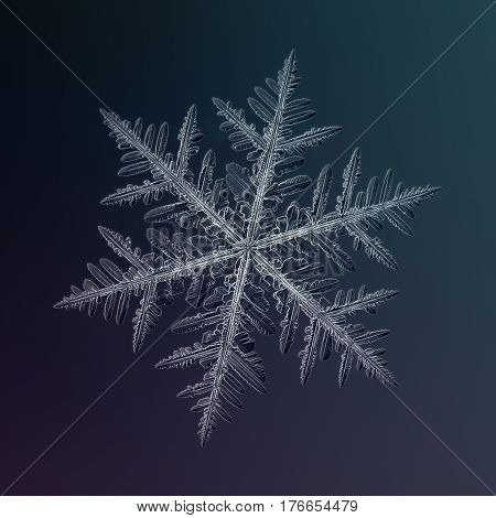 Macro photo of real snowflake: single snow crystal of fernlike dendrite type with fine symmetry and six long, ornate arms with lots of side branches and icy