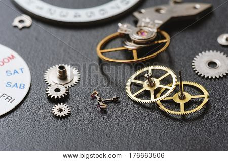 Parts Of Automatic Wristwatch