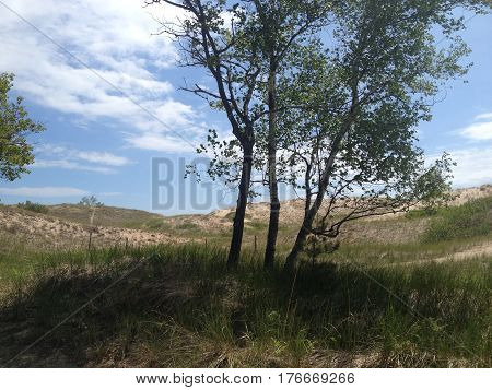 Sand dunes with cloud formation and blue sky in Michigan
