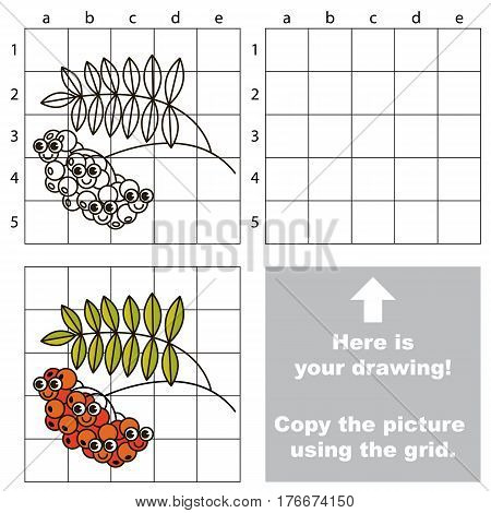 Copy the picture using grid lines. Easy educational kid game. Simple level of difficulty. Copy the Ash berry. Red Rowan.