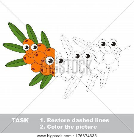 Buck thorn in vector to be traced. Restore dashed line and color the picture. Visual game for children. Easy educational kid gaming. Simple level of difficulty. Worksheet for kids education.