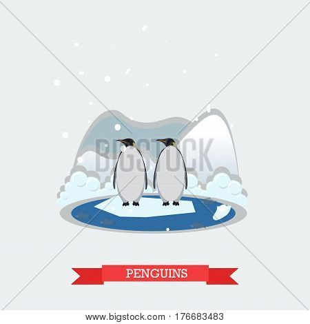 Vector illustration of funny penguins standing on arctic glacier. Wild north landscape and arctic aquatic flightless birds design element in flat style. poster