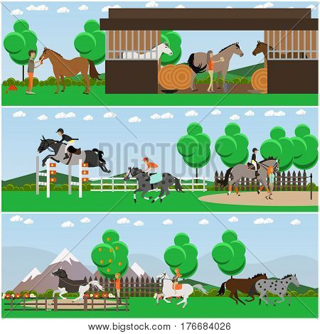 Vector set of horse riding posters, banners. Equestrian show jumping, riding, grooming, training and taming horses, stable design elements in flat style.