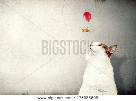 Cat and gold fish . Mixed media