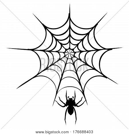 spider web professional fear halloween hanging poisonous