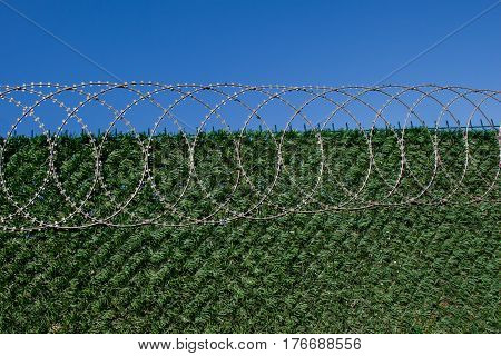 Barbed Wire Fence  For Protection Purposes Of A Pproperty