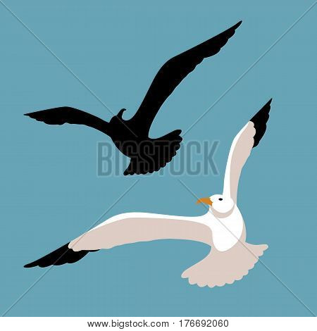 seagull vector illustration style Flat set black silhouette