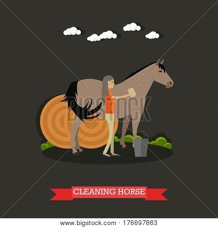 Vector illustration of horse breeder female cleaning horse and round hay bales behind them. Grooming horses flat style design element.