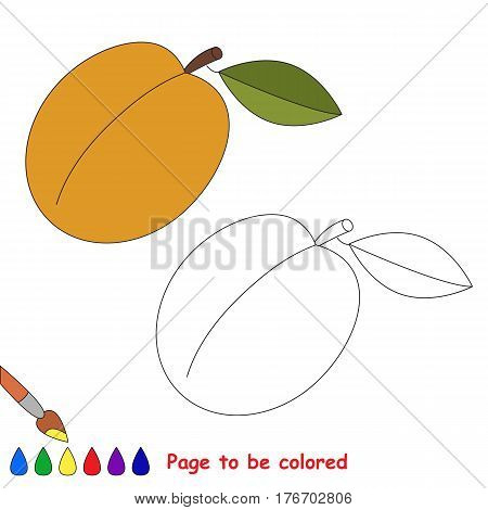 Apricot to be colored. Coloring book to educate kids. Learn colors. Visual educational game. Easy kid gaming and primary education. Simple level of difficulty. Coloring pages.