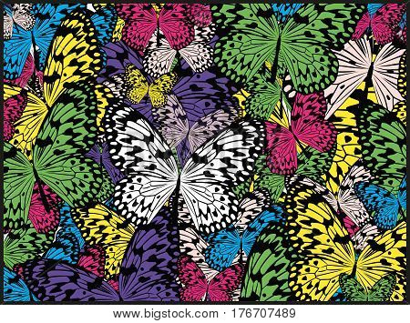 Mixed Variety Of Colorful Rice Butterflies Vector Background