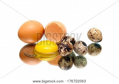 Chicken and quail eggs on a white background. Horizontal photo.