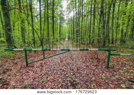 barrier on the path in the green forest