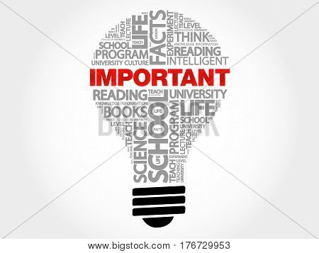 IMPORTANT bulb word cloud , business concept