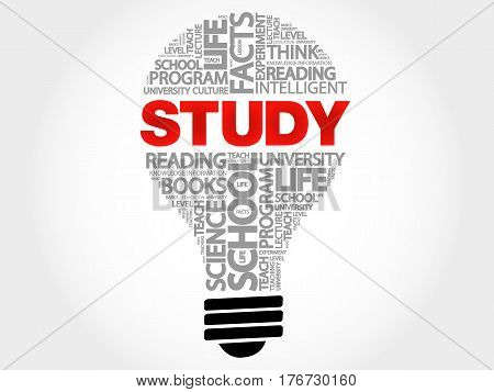 STUDY bulb word cloud collage, education concept background