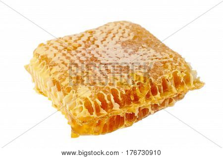 Honey comb isolated on a white background