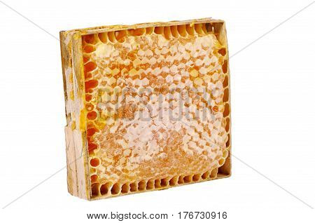Honey comb in a wooden frame isolated on a white background