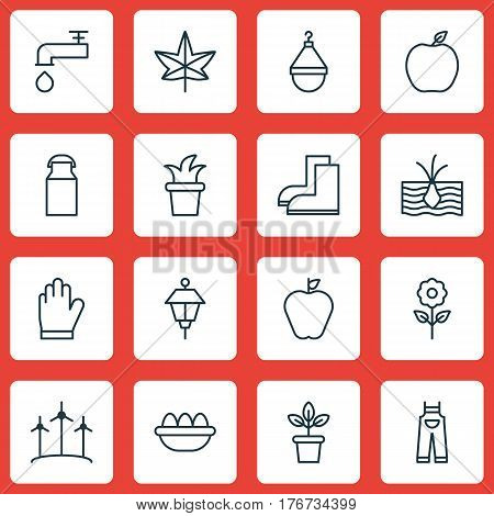 Set Of 16 Gardening Icons. Includes Jug, Decorative Plant, Autumn Plant And Other Symbols. Beautiful Design Elements.