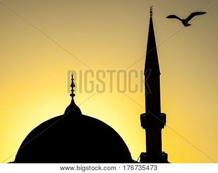 Istanbul, Turkey - February 24, 2017: A seagull over the dome and minarette of a mosque at sunset