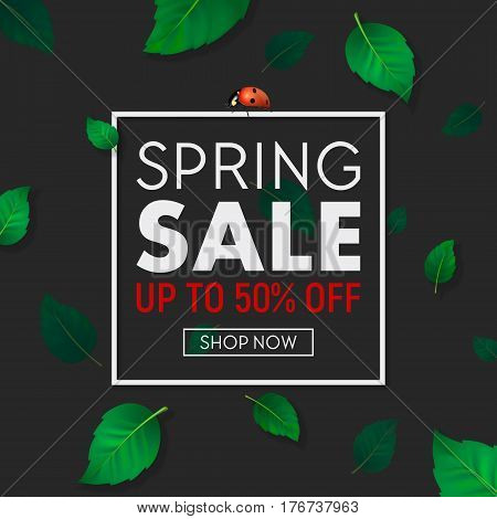 Spring sale background banner with frame, beautiful green leaves and ladybug. Design template for online store, flyer, shopping poster, selling sign, discount, marketing, web, header etc. EPS10 illustration.