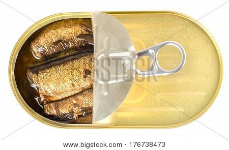 Canned sardines sea isolated on white background