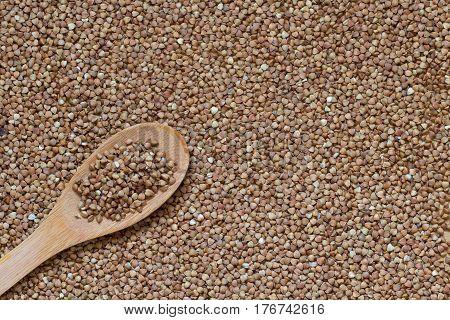 Buckwheat grain background or food background. Organic buckwheat.