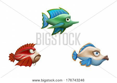 Colourful aquarium fish on a clean white background
