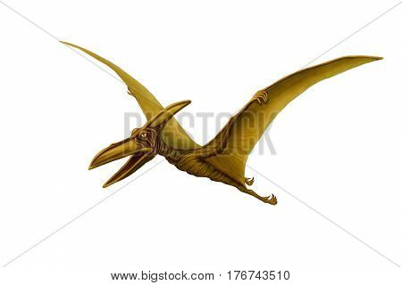 Green pterodactyl spread its wings on a white background