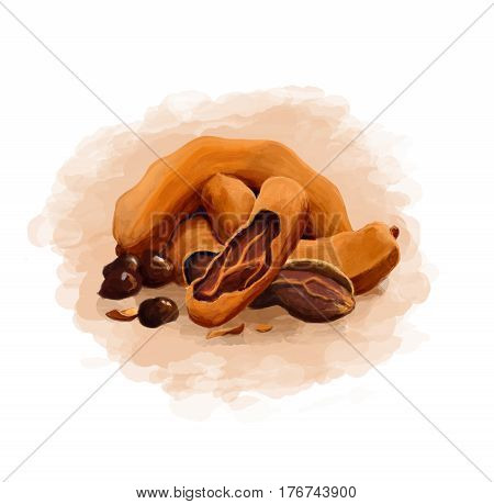 colorful tamarind on a pure white background