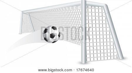 soccer ball and net
