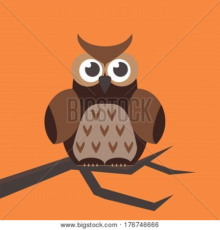 Cute modern bright cartoon owl expression animal character comic funny doodle behavior bird and little colorful emotion humor eyes wide face vector illustration. Wildlife brown halloween symbol.