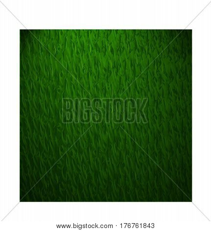Beautiful green vector grass texture with vingette