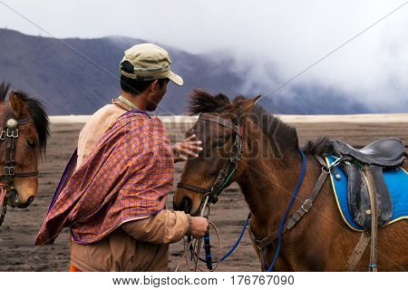 Horseback rider at midday petting his brown horse in the valley at the Tengger Semeru National Park in East Java Indonesia.