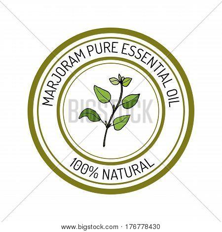 marjoram, essential oil label, aromatic plant Vector illustration