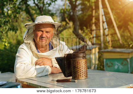 Beekeeper is working with bees and beehives on the apiary. Apiculture